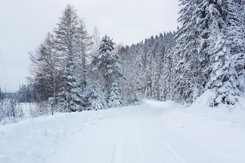 2018 Rally Sweden preview