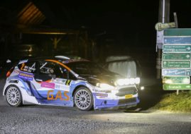 Hermann Neubauer at Rebenland Rallye